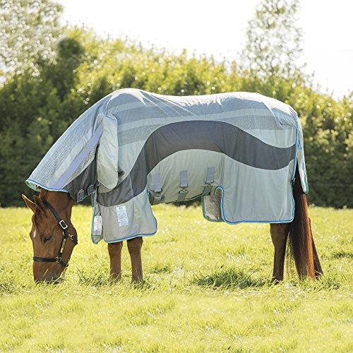 60 Pferde Decke Größe (Horseware Amigo Evolution Fliegendecke Ekzemerdecke Silver/ Dark Grey (100))