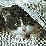 40 Lunchservietten Katze mit Zeitschrift (Good news?)1/4 gefalzt, 3-lagig Größe offen: 33x33