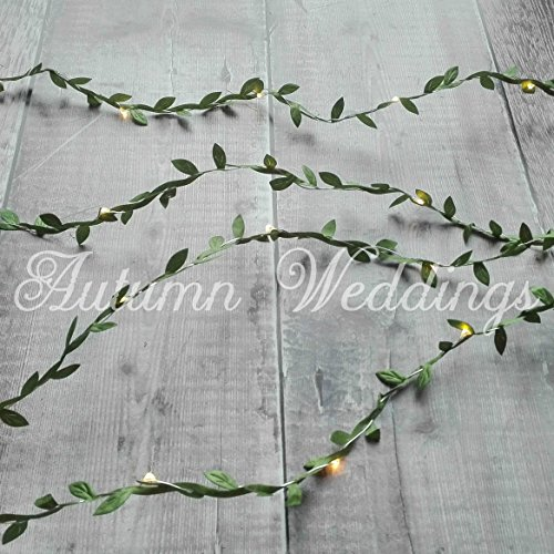 5m 50 LED Green Leaves String Lights- AA Battery - Warm White - The Day For Love