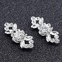 VHNVHN 2pcs(1pair) Shoes Flower Crystal Diamond Shoe Clips Fashion Decoration Buckle