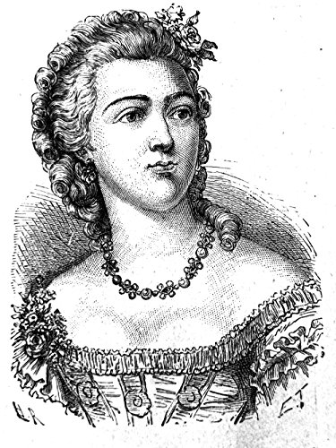 Spiffing Prints Henri Rousseau - M.J. comtesse - Large - Archival Matte - Brown Frame