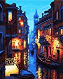 DIY Oil Painting by Numbers Kits Theme - Digital Oil Painting Canvas Kits PBN for Adults Children Kids Birthday, Wedding or new accommodation, Christmas Decor Decorations Gifts -16*20 inches-E885 (Frameless)