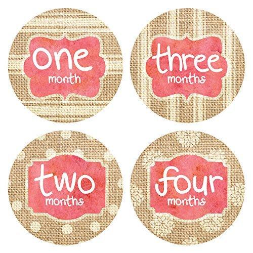 Pinkie Pinguin Monatsaufkleber für Babys, Jute - Baby Girl - Meilenstein - 1-12 Monate - Onesie Sticker - Geschenk für Babyparty (Monat Onesies Aufkleber)