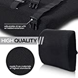 Best Lumbar Supports - Omnijoe Ultra Light Lumbar Support Pillow - Memory Review