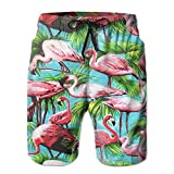Mens Beach Shorts Tropical Forest Flamingo Swim Trunks Board Cargo Summer Shorts Quick-Drying X-Large