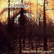 Enter Suicidal Angels [Explicit]
