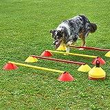 Mini-Hürden, 5er Set, mit gelben Markiermulden und Stangen 100 cm, für Agility - Hundetraining (gelb)