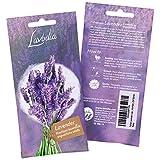 LAVODIA Lavendel Samen mehrjährig winterhart Premium Saatgut für ca. 100 Lavendel Pflanzen (250 Lavendelsamen)