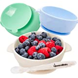 Baby Bowls with Guaranteed Suction - 4 Piece Silicone Set with Spoon - UpwardBaby - for Babies Kids Toddlers - BPA Free - Fir