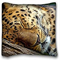 Decorativo Quadrato Throw Pillow Case animali Leopard Sleeps Albero 18 x 18 in due lati