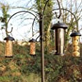 Easipet Hanging Wild Bird Feeder set of 4 Seed Nut Fat Ball Ngyer Garden Feeding Station by easipet