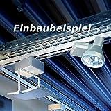 Fischer Leuchten Deckenleuchte Fischer HV Spur 5LED-Licht für Eutrac 189223-Phasen