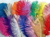 "Sparkles Gems UK 5 x 10"" 25cm Ostrich Feathers Plumes - Mixed Colours"