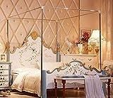 Mosquitera de acero inoxidable con marco para la cama, Plateado, matrimonio grande
