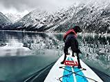 Ruffwear 45101-615M K9 Float Coat Schwimmweste für Hunde, M, rot - 5