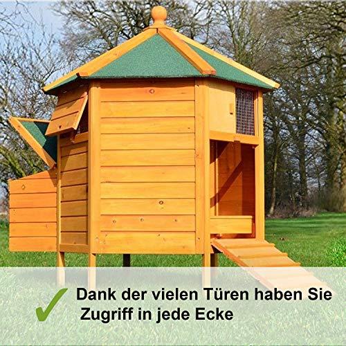 Zooprimus – Hühnerhaus Pavillon - 3