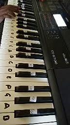 Casio 61-Key Portable Keyboard (CTX700)