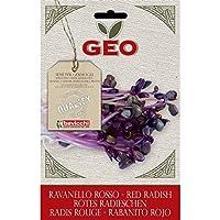 Geo Rabanito VRV1303 - Semillas para germinar, 12.7 x 0.7 x 20 cm, color marrón