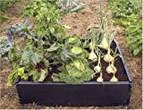 Raised Garden Beds Review and Comparison