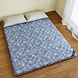 hxxxy Tatami floOr mat Spine care Futon mattress topper,Single size Or Queen size Dorm [charcoal]-A 90x190cm(35x75inch)
