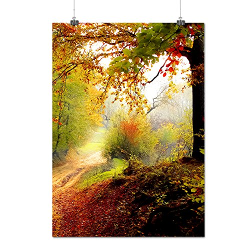 colorful-autumn-tree-late-fall-matte-glossy-poster-a1-84cm-x-60cm-wellcoda