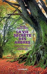 vignette de 'La vie secrète des arbres (Peter Wohlleben)'