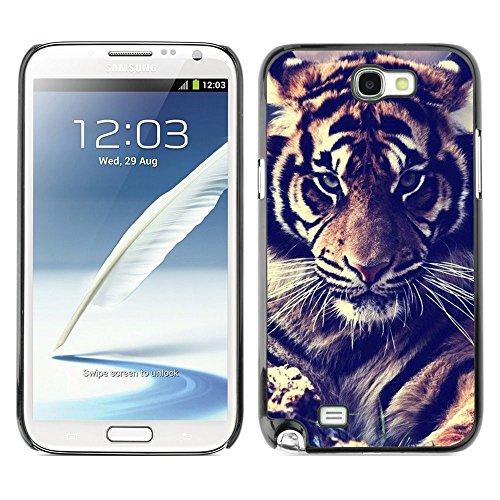 Plastic Shell Protective Case Cover    Samsung Galaxy Note 2 N7100    Filter Fur Roar Big Cat @XPTECH (Samsung Galaxy Stellar Hard Case)