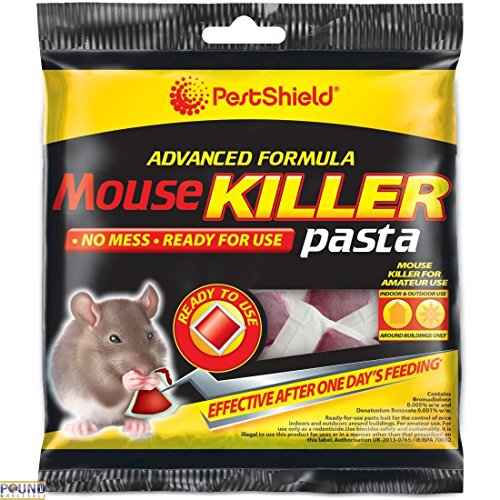 No More MOUSE RAT Glue Traps - Buy The Best Rodents