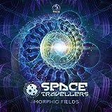 Morphic Fields