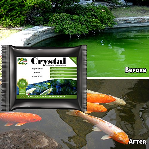 green-water-treatment-solution-1kg-hydra-crystal-for-all-ponds-with-external-filter