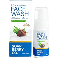 SoapBerry Co. Foaming Facewash with Teatree & Soapberry For Normal and Oily Skin 100 ml