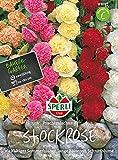 Stockrose (Stockmalve) Prachtmischung, gefüllt von Sperli-Samen