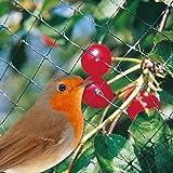 Vogelschutznetz aus Nylon. Geeignet für Angewandt werden direkt auf Kulturen A Schutz-Früchte, Aussaat und Gemüse. Schützt vor Angriffen von Vögeln. Leicht und strapazierfähig, sich feuchtem mit Leichtigkeit. Nicht schadet die Kulturen, nicht schadet