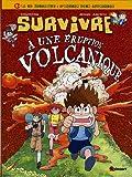 Image de Survivre à une éruption volcanique