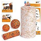 Blackroll Orange (Das Original) Starter Set mit der Faszienrolle MED - Alles für den softeren Einstieg ins Faszientraining  inkl. Übungs-DVD, Übungsposter & Booklet. Qualität Made in Germany