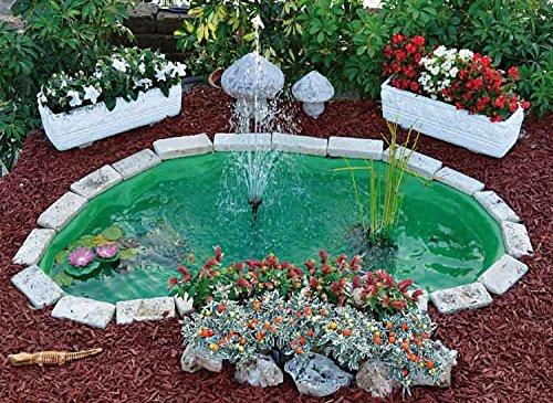 Vasca Da Esterno Per Tartarughe : Vasche e laghetti per tartarughe guida all acquisto e migliori