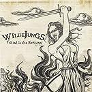 Feiernd in Den Untergang by Wilde Jungs