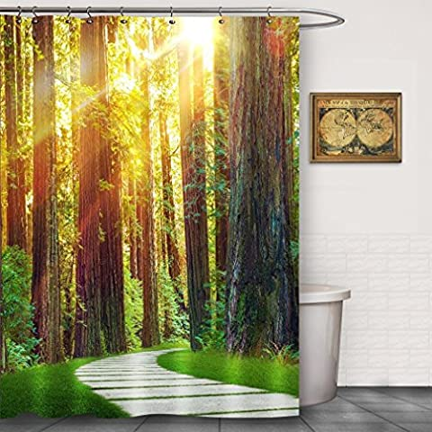 foog Redwood Forest Morning Sunlight Stoff Schimmelresistent Wasserdicht Duschvorhang Sets grün Gräser Blätter Ast natur Thema, Polyester-Mischgewebe, farblos, 70