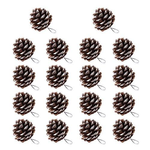 BBTO 18 Pezzi 1.57 Pollici Pino Cono Natale Neve Punta Naturale Coni di Pino con Corda per Albero di Natale Decorazione