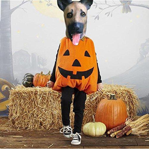 Halloween Tiermasken Neuheit Wolfshund Kopfbedeckung Halloween Party Kostüm Tierkopfmaske für Erwachsene Kinder (Scarecrow Kostüm Für Erwachsene)