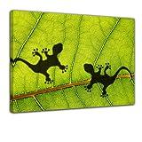 """Bilderdepot24 Keilrahmenbild """"Dschungelblatt mit Geckos"""" - 120x90 cm 1 teilig - fertig gerahmt, direkt vom Hersteller"""
