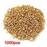 Best SODIAL(R) Rivets - SODIAL (R)1000 Gold Tone Round Dome Rivet Spike Review