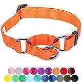 Blueberry Pet Sicherheitstraining Martingale Hundehalsband Klassisch Einfarbig 2 cm M Basic Nylon Hundehalsband Langlebig - Florenz-Orange