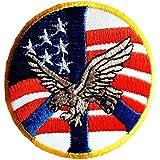 Parches - USA América águila bandera Army - blanco - 7,7x7,7cm - termoadhesivos bordados aplique para ropa