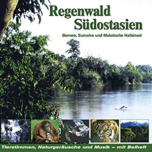 regenwald-sdostasien-borneo-sumatra-und-malaiische-halbinsel