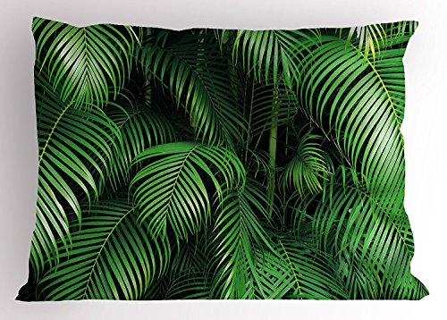 Green Pillow Sham, Tropical Exotic Palm Tree Leaves Branches Botanical Photo Jungle Garden Nature Eco Theme, Decorative Standard Queen Size Printed Pillowcase, 30 X 20 Inches, Green (Green Leaf Queens)
