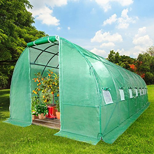 3 Regal-gewächshaus (BRAST Gewächshaus mit rostfreiem Stahlfundament 300x800cm 24m² Garten Tomaten Pflanzen-Haus Treibhaus Foliengewächshaus)