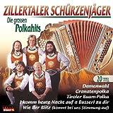 Die Grossen Polkahits -