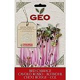 Geo Cavolo Rosso Semi da Germoglio, Marrone, 12.7x0.7x20 cm