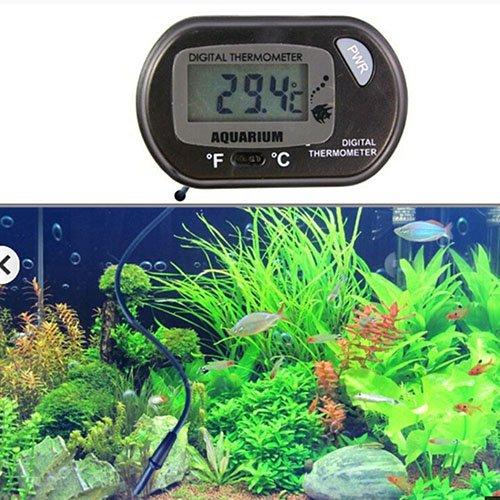 Livecity Terrarium, Aquarien, Thermometer, digital, LCD-Display, Schwarz